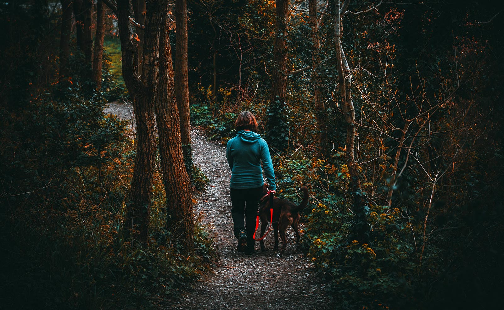 woman walking down wooded path with dog